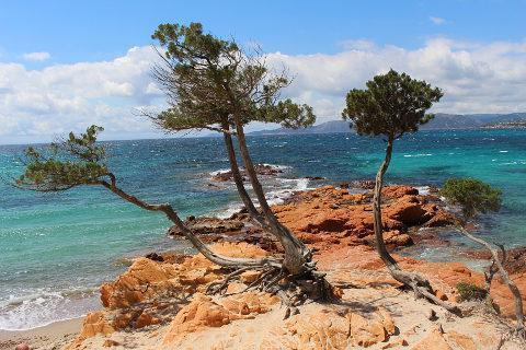 Photo of Corsica Beaches