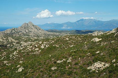 Photo of Desert des Agriates in North Corsica