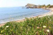 coastal-walk