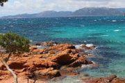 palombaggia-beach