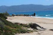 beach-nearby